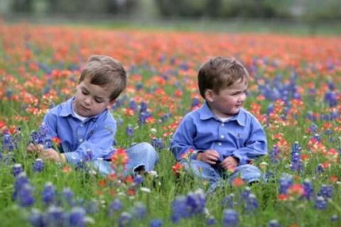 лечение хронических заболеваний у детей дошкольного возраста